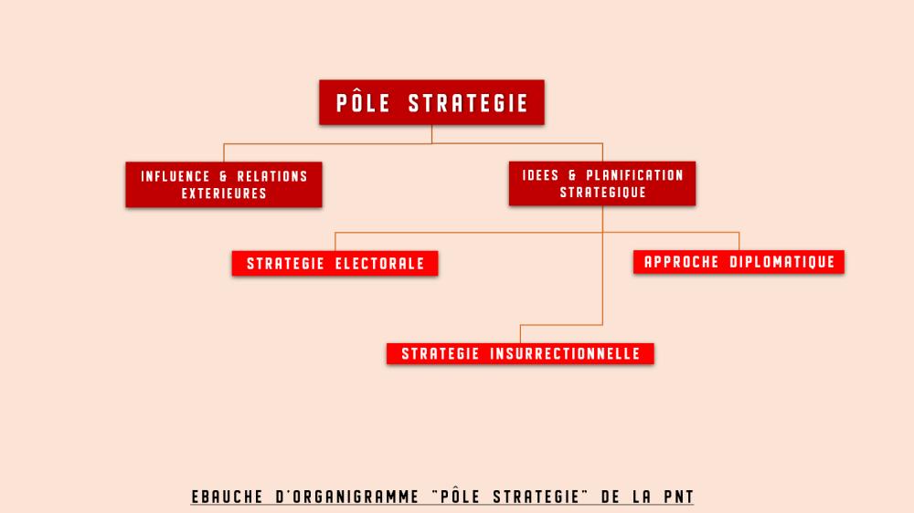 organigramme strategie