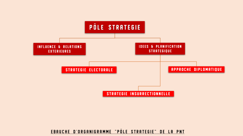 organigramme strategie